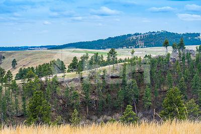 A beautiful overlooking view of nature in Wind Cave National Park, South Dakota
