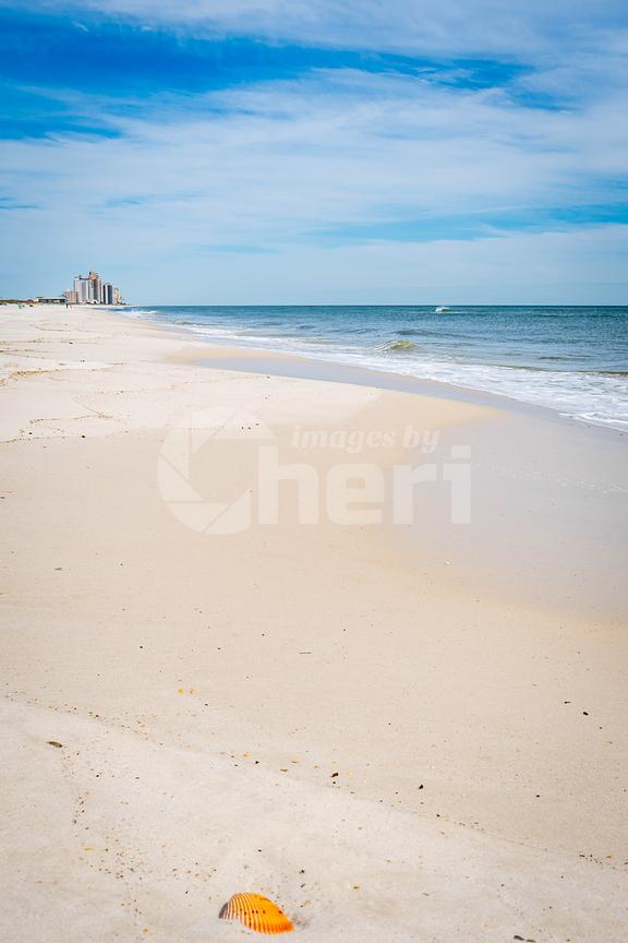 The overlooking view of the shore in Perdido Key State Park, Florida