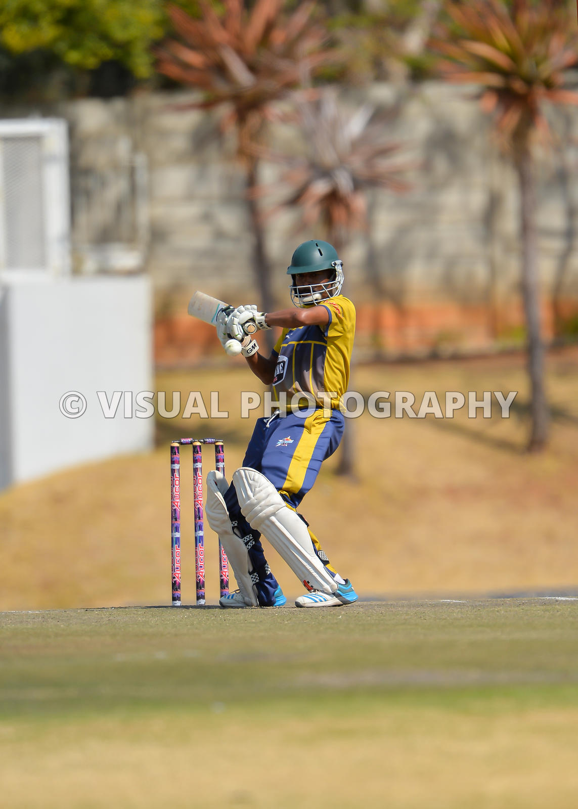 Cricket - 2018  day match (20-over match), Johannesburg - South Atrica - Bank  - Warriors