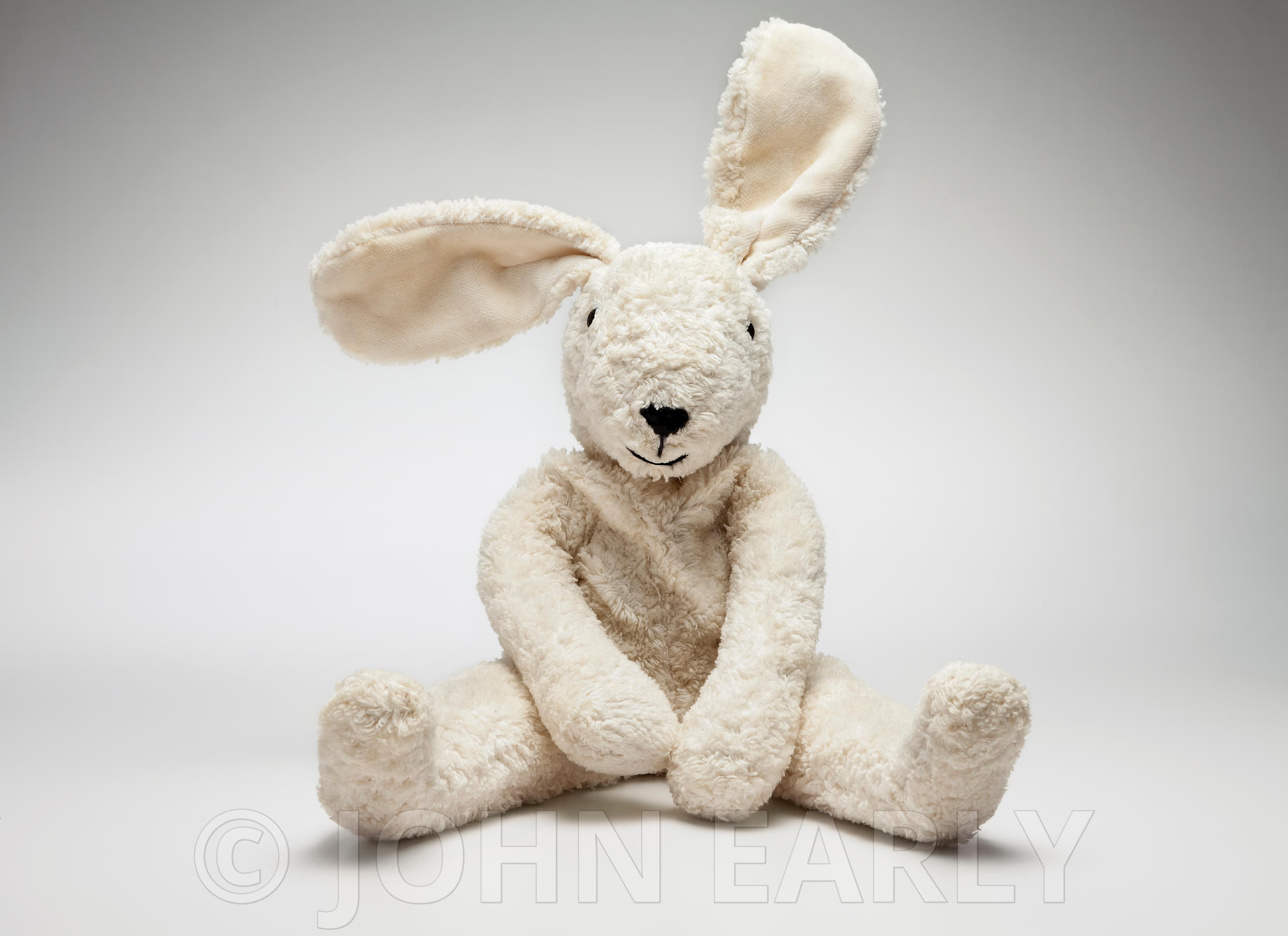Stuffed Toy (Bunny Rabbit) On White Pose #5