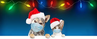 Christmas Dog and Cat Wearing Face Masks Over Banner