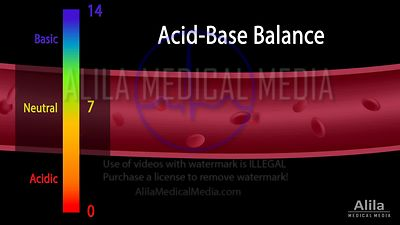 Acid-base balance NARRATED animation