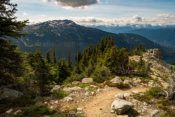 Winding steep mountaintop hiking trail, Blackcomb Mountain, Whistler, Canada.