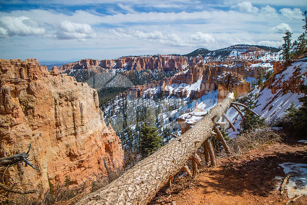 Red Rocks Hoodoos in Rainbow Point at Bryce Canyon National Park, Utah