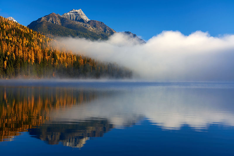 Bowman Lake Fall Sunrise