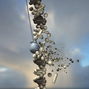 DNA Demolition Wrecking Ball