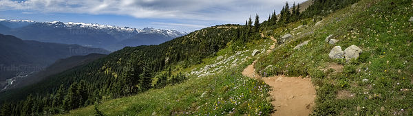 Panoramic view of hiking trail and landscape, Blackcomb Mountain, Whistler, Canada.