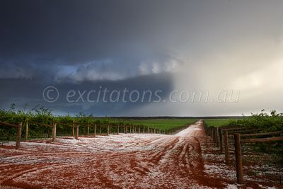 Thunderstorm passes over vineyard.