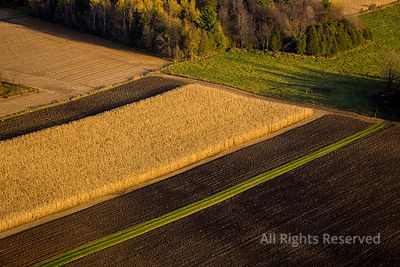 Farmland near Valleyfield Quebec Canada