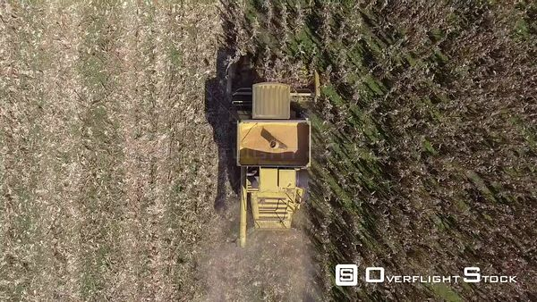 Drone Aerial View oF Popcorn Harvest in Kentucky