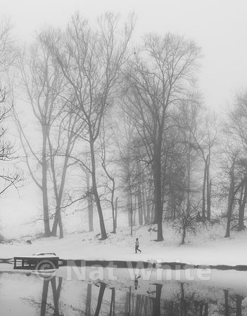 RC_fog_with_pond_reflection-walking-3413_December_21_2020_NAT_WHITE