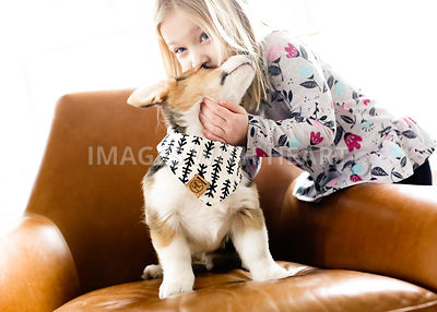 girl kissing corgi puppy indoors on chair lifestyle