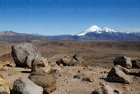 View of Payachatas volcanos from Guallatiri volcano base camp, Lauca National Park, Region XV, Chile