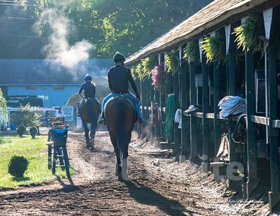 2021_calendar_saratoga_shedrow_Date_(August_07_2012Month_DD_YYYY)1_320_sec_at_f_9.0_NAT_WHITE