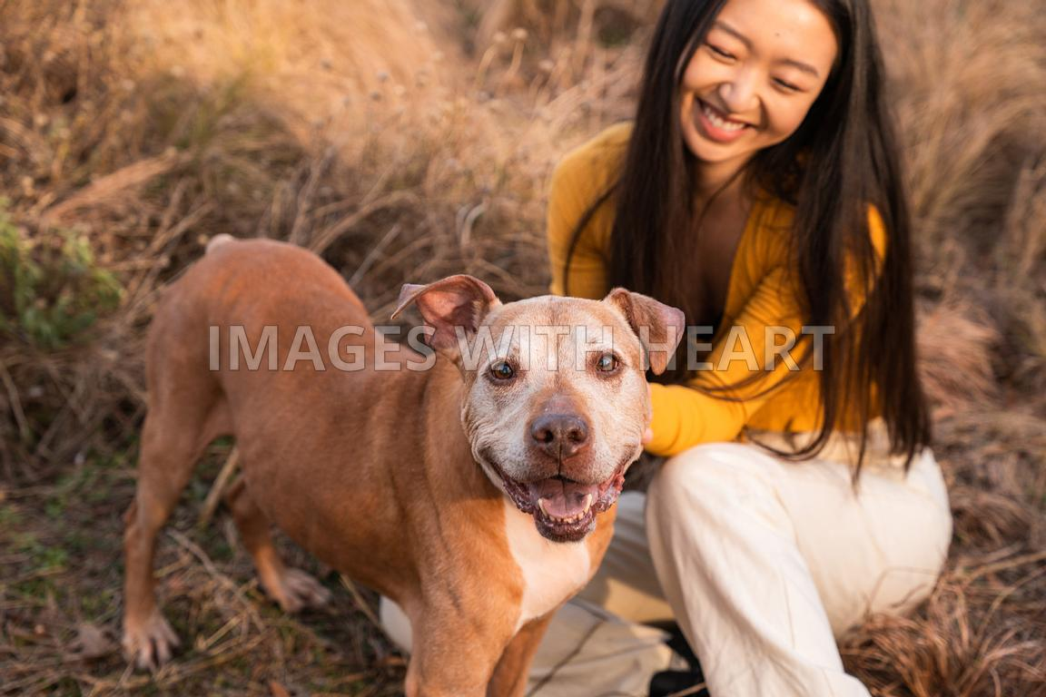 Large Smiling Senior Dog With Woman in Field Close Up