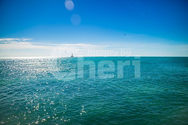 A blue clear sky with scenic view in Key West, Florida