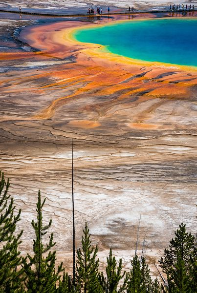 Grand Prismatic Hot Spring's multicolored layers