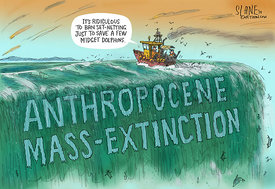 Mass-Extinction
