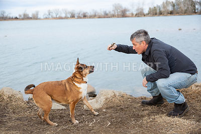 Dog-And-Man-Playing-With-Stick-By-Lake