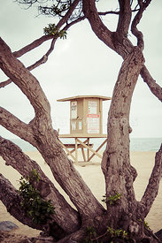 Newport Wedge Lifeguard Tower W Through Trees