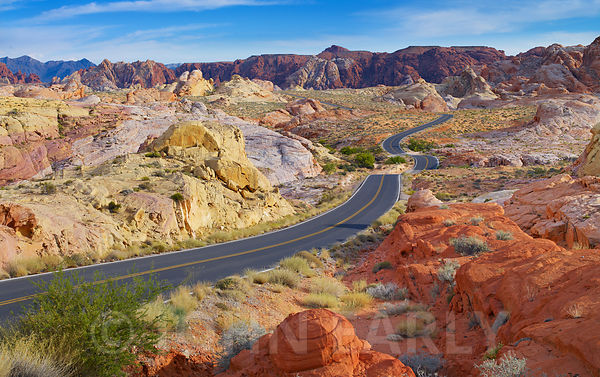 Valley of Fire Road #5