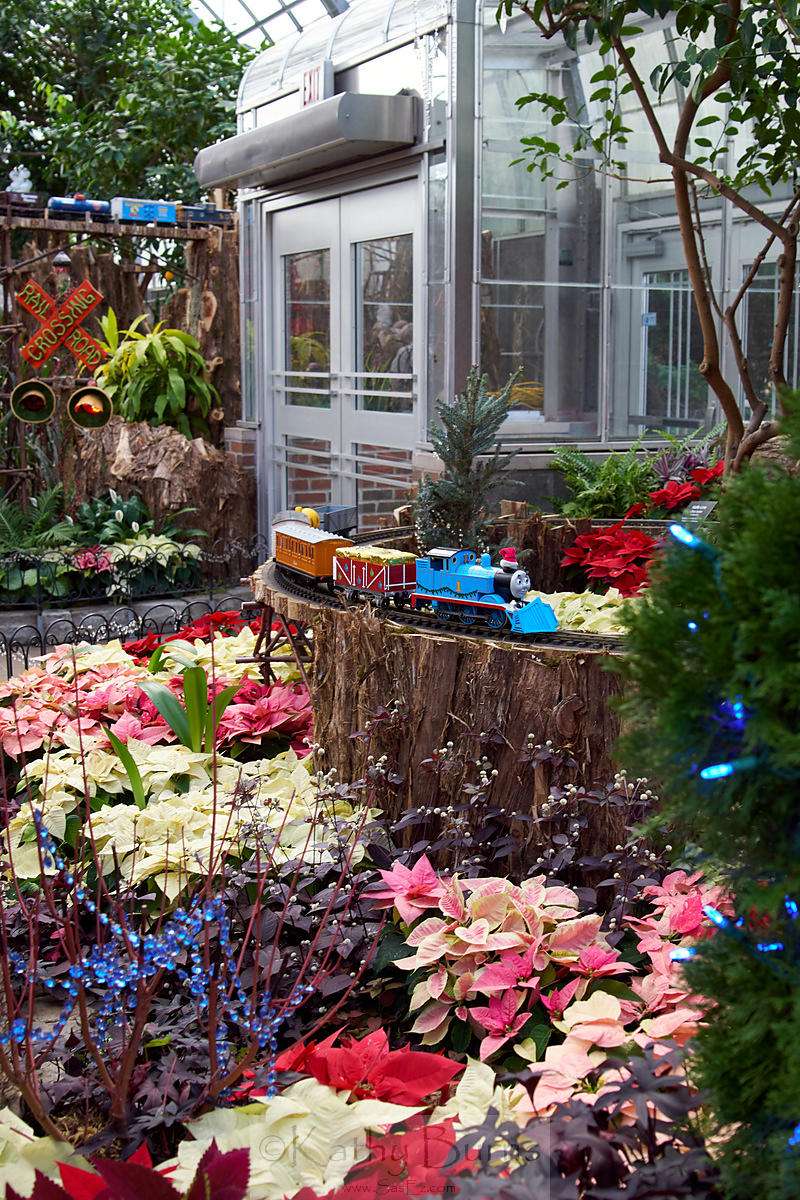 Models at the Krohn Conservatory