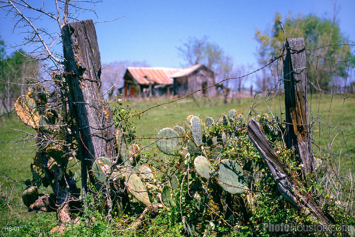 texas-ranch-fence-H6-01