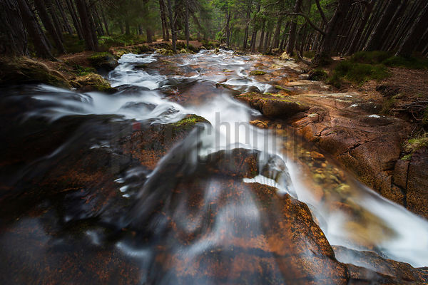Mountain stream in the Cairngorms