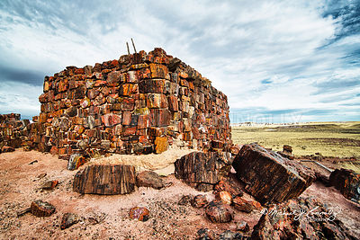 Agate House- Petrified Forrest, Arizona