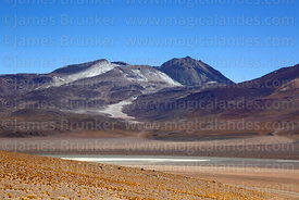 View of Pampa Rio Blanco and Sairecabur volcano from northwest, Eduardo Avaroa Andean Fauna National Reserve, Bolivia