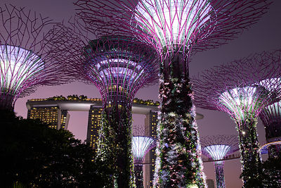 Marina Bay Sands  [ Gardens by the Bay]