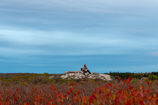 Contemplation at Sunrise at Bear Rocks - Dolly Sods, West Virginia