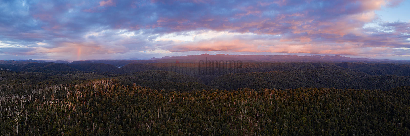Tarkine Landscape with the Meredith Range in the Background at Sunset