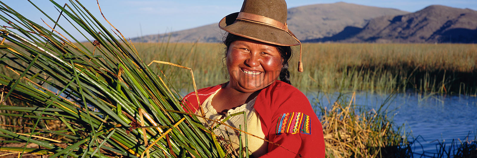Woman Gathering Reeds at Lake Titicaca