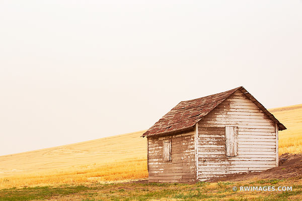 OLD BARN IN THE FILED FARMLAND PALOUSE EASTERN WASHINGTON STATE