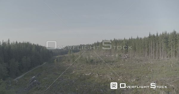 British Columbia Canada Rain Forest Logging