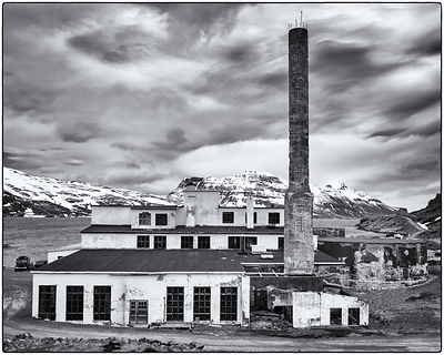 Herring_Factory