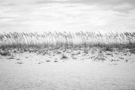 Pensacola Beach Beachscape Black and White Photo