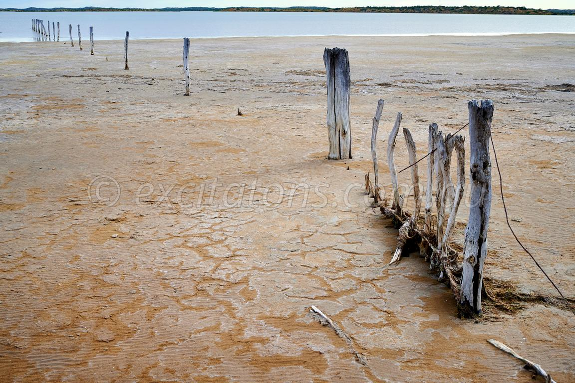 Old fence, Coorong, South Australia.