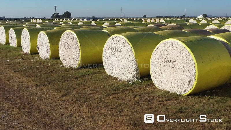 A Field of Cotton Bales, Brazos County, Texas, USA