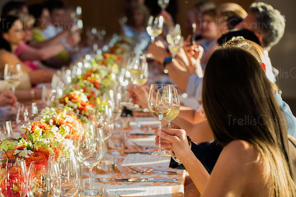 Guests toasting with white wine glasses at a festive summer soiree