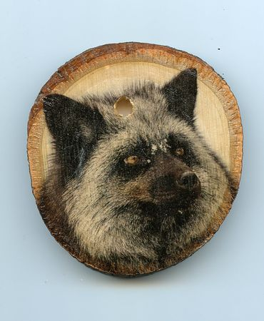 Fox_small_wood