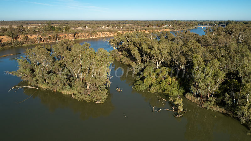 Murray River upstream of Curlwaa, NSW, Australia
