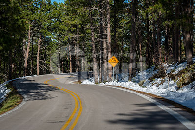A long way down the road of Black Hills National Forest, South Dakota
