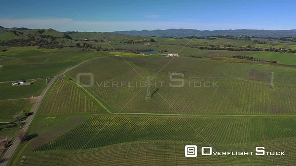 Vineyards in Carneros Region of Napa Valley in Spring. Califlornia Drone Aerial View