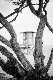 Newport Wedge Lifeguard Tower W Black and WHite Photo