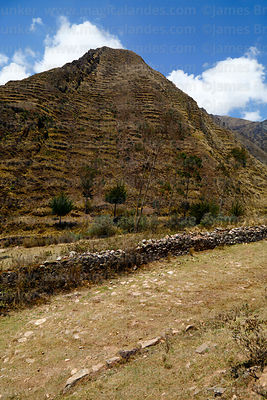 Section of pre Hispanic / Inca road and agricultural terracing on hillsides in Italaque Valley, La Paz Department, Bolivia