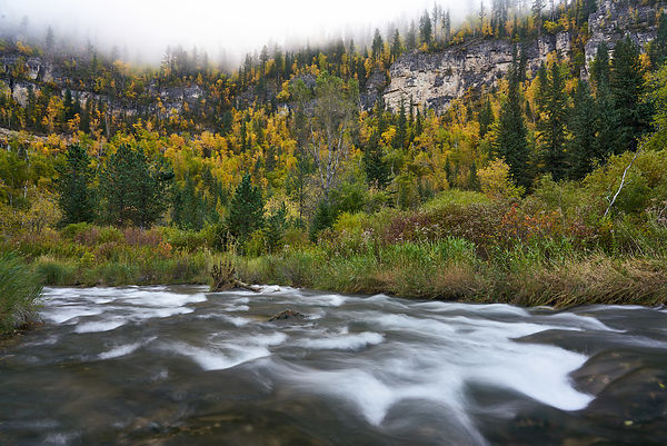 Spearfish_Creek_Fall_Foliage