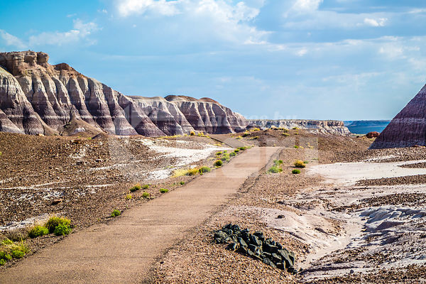 A trail in Petrified Forest National Park, Arizona