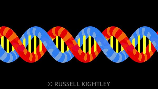 DNA Flat Graphic Style